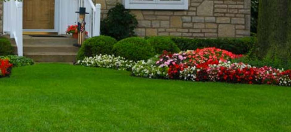 New Albany Lawn Care New Albany Oh 43054